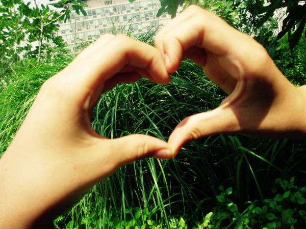 photo-mains-positionnees-en-coeur-avec-focus-sur-vegetaux-page-accueil